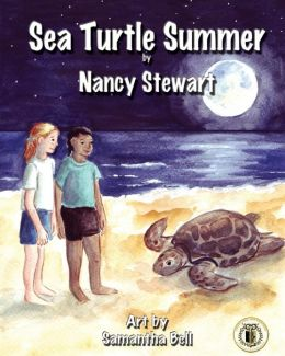 Sea-turtle-summer
