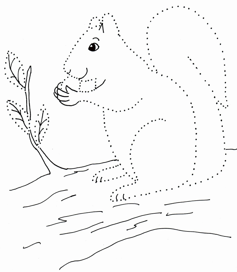 todays free printable a dot drawing of a squirrel similar to dot to dot puzzles drawing with dots do not have numbers instead small children connect - Drawing For Small Children