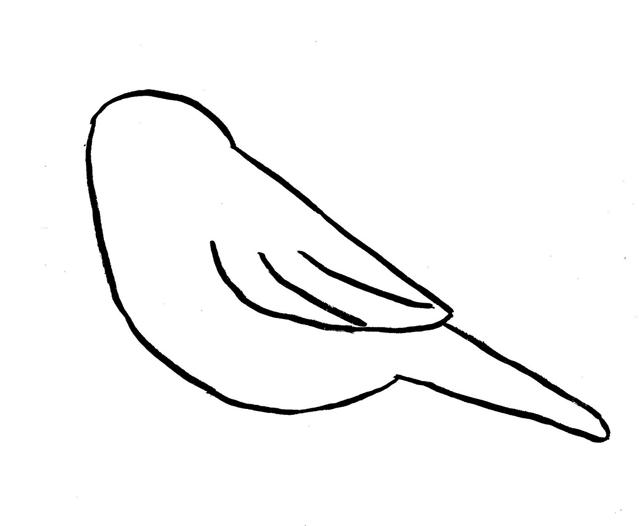 Line Drawing Bird : Chickadee drawing step by samantha bell