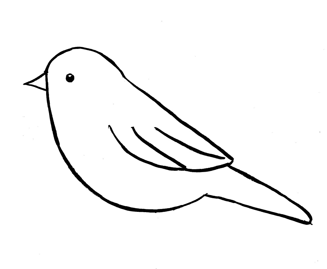 Simple Bird Line Art : Chickadee drawing step by samantha bell
