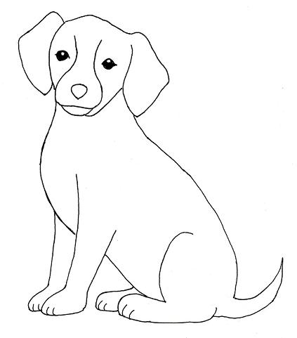 Dog Drawing Step By Step Samantha Bell