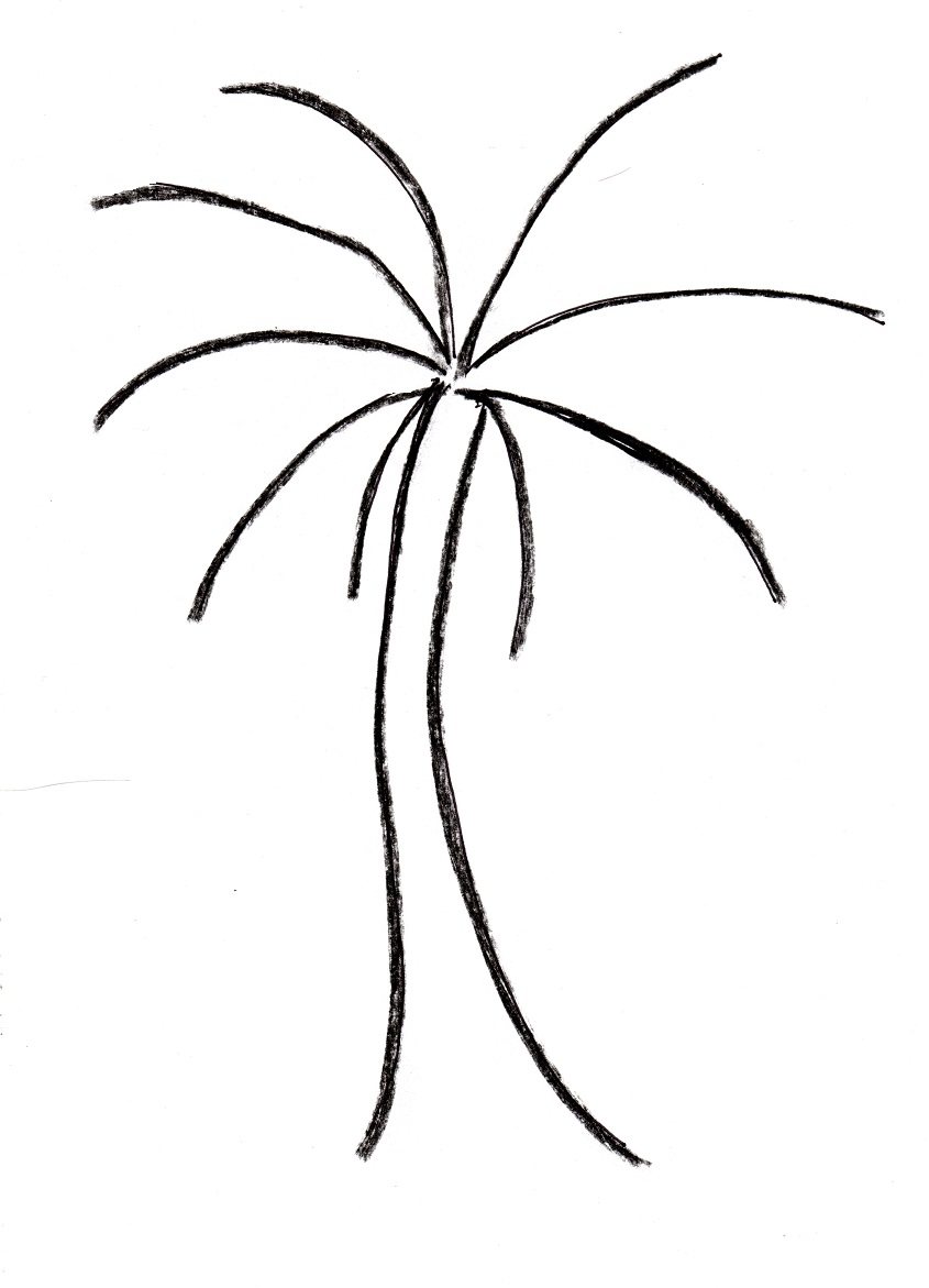 Uncategorized How To Draw A Palm palm tree drawing samantha bell tree002