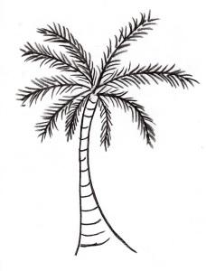 palm-tree004-2