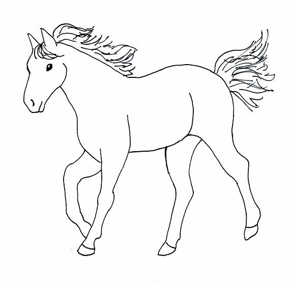 Horse drawing step by step for Immagini di cavalli da disegnare