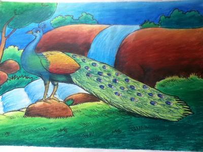 peacock-21795786 (1)