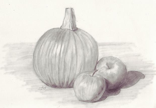 Drawing a still life