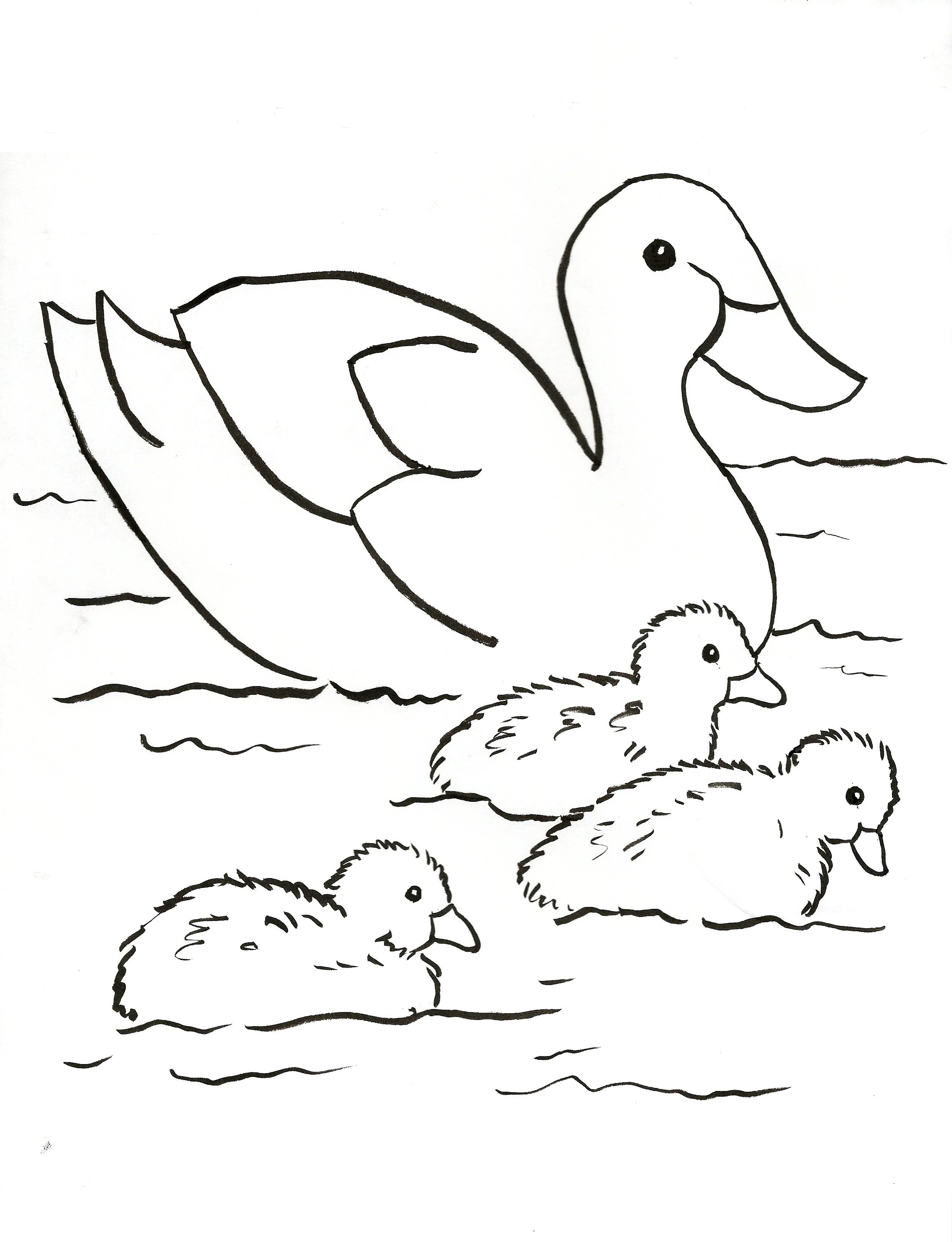 Duck family coloring page samantha bell for Ducks coloring pages