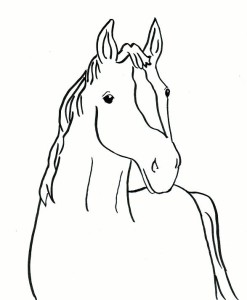 horse-coloring-page4