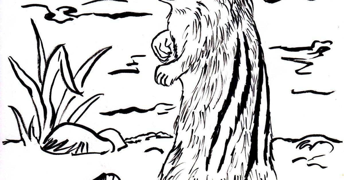 Chipmunk Coloring Page Samantha Bell