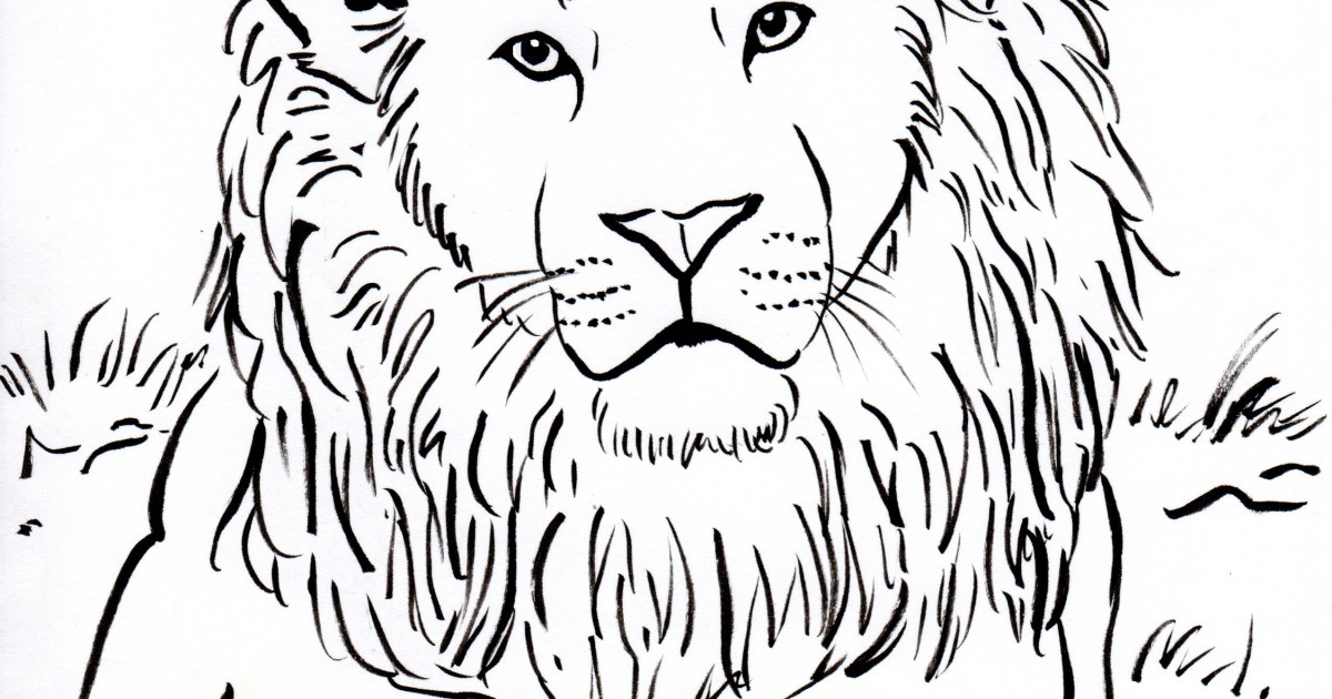 Lion Coloring Page - Art Starts