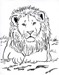 lion coloring page 001