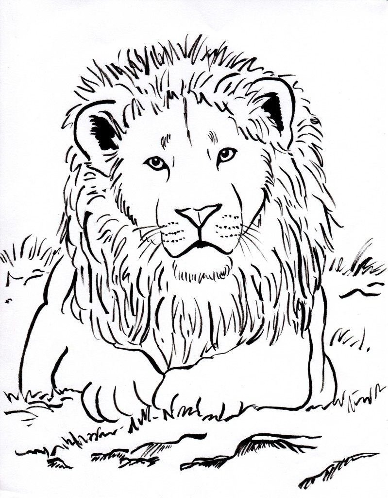Lion Coloring Page - Samantha Bell