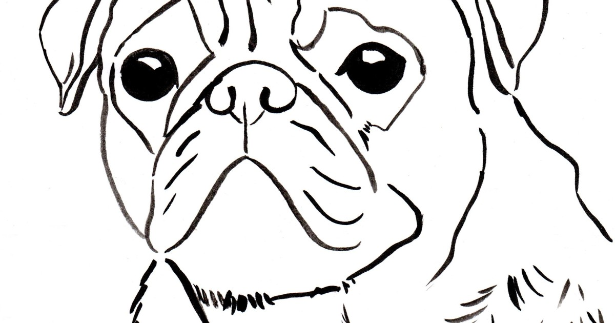 free pug coloring pages - photo#36