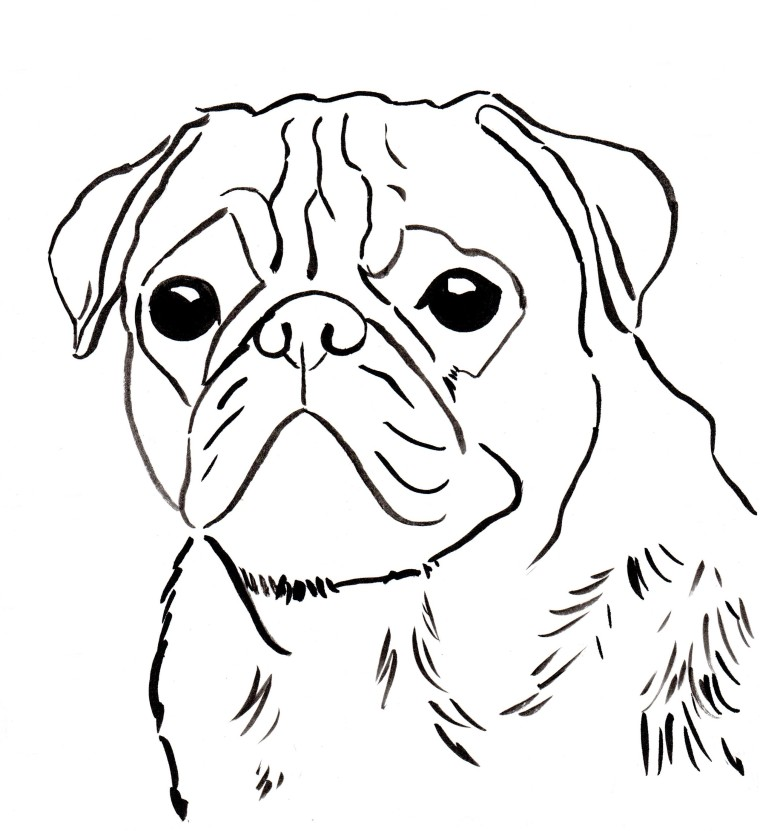 Free Pug Coloring Page To Download And Print