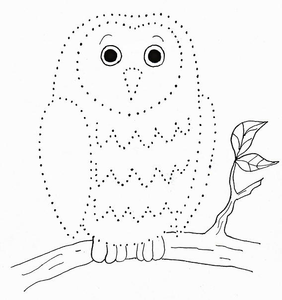 Owl Dot Drawing