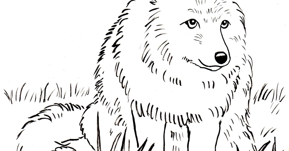 Fox Coloring Page - Samantha Bell