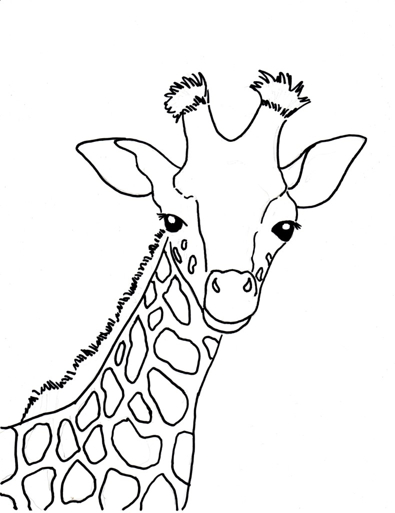 Baby Giraffe Coloring Page Art Starts For Kids