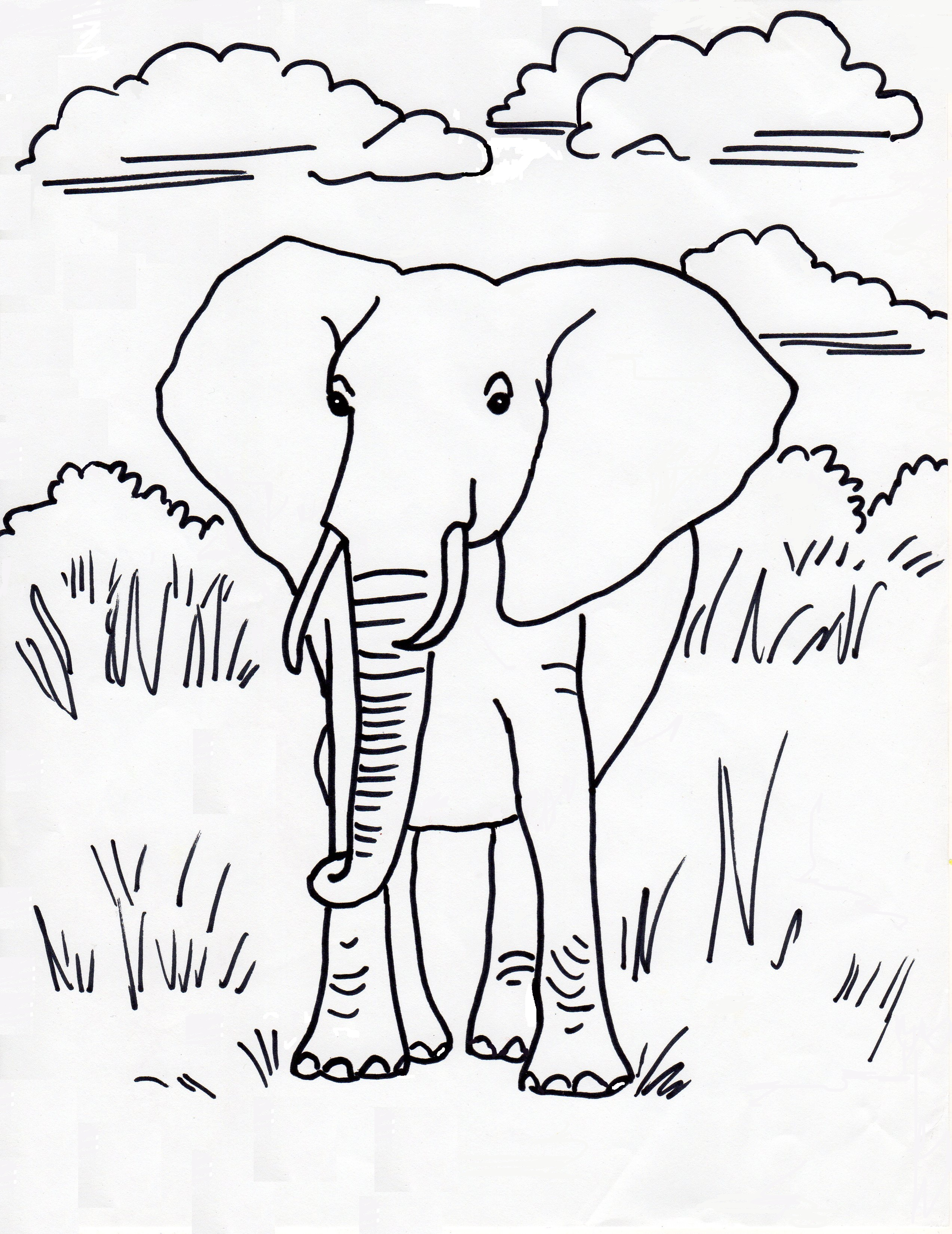 Coloring Pages African Elephant Coloring Page african elephant coloring page eassume com samantha bell