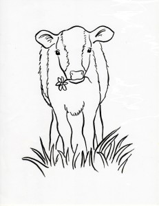 calf coloing page
