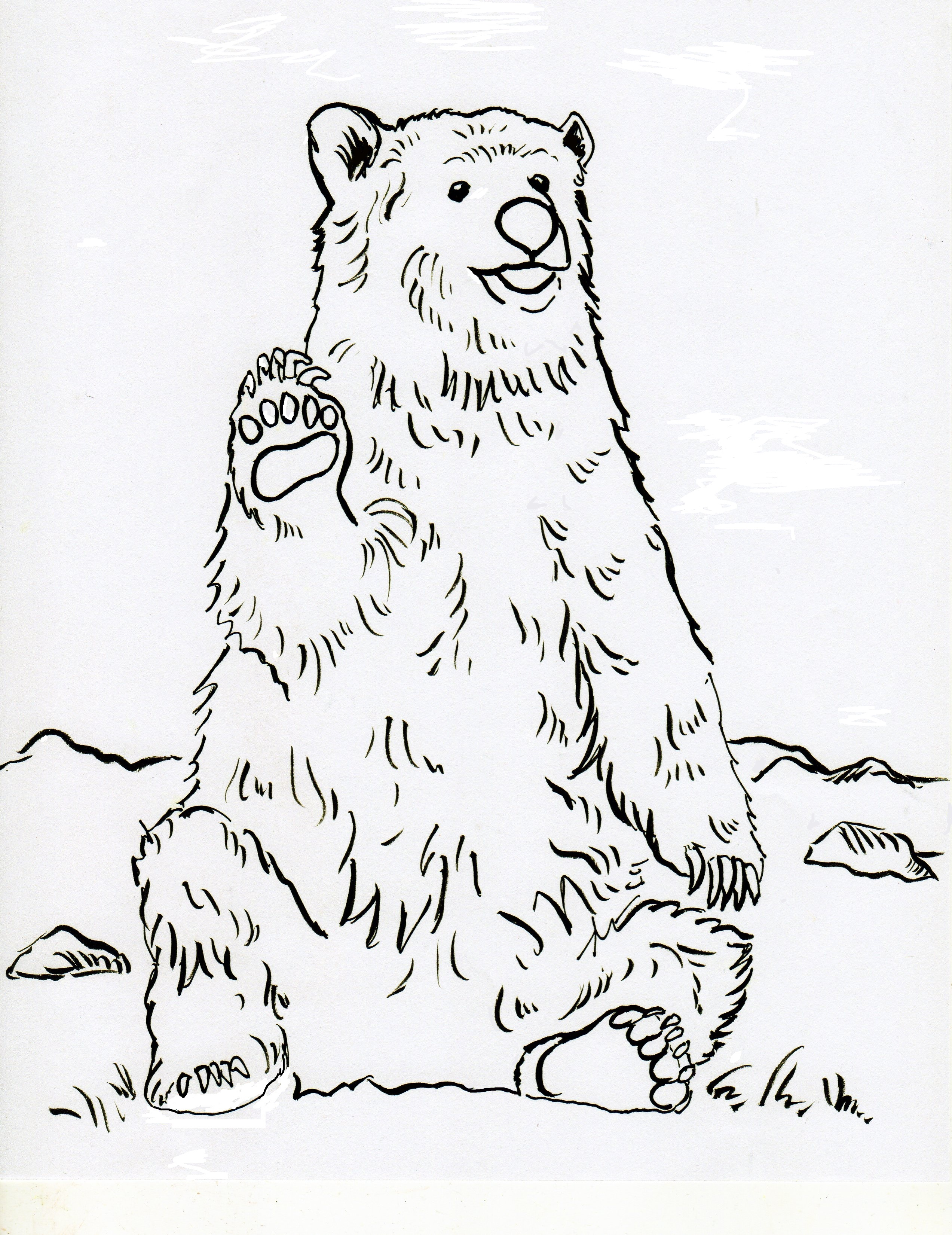 grizzly bear coloring page 2