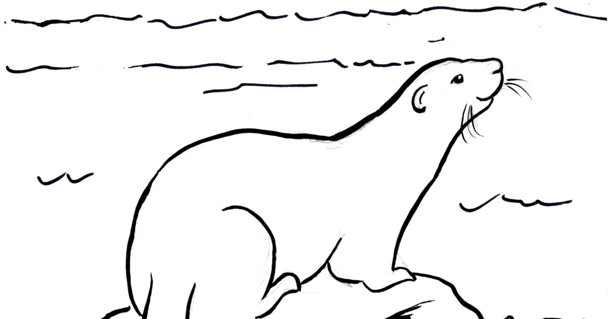 river otter coloring page samantha bell - Otter Coloring Pages