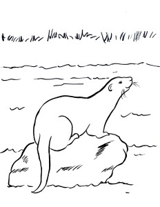sea otter coloring pages - free coloring pages and reference pictures samantha bell