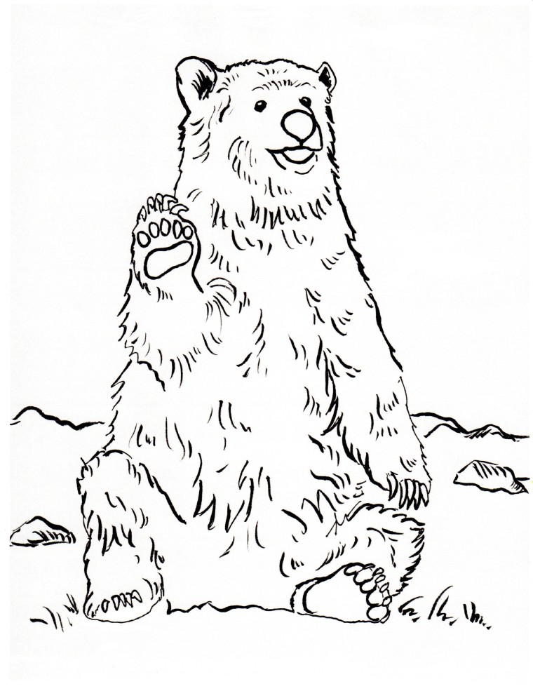 Grizzly Bear Coloring Page - Samantha Bell