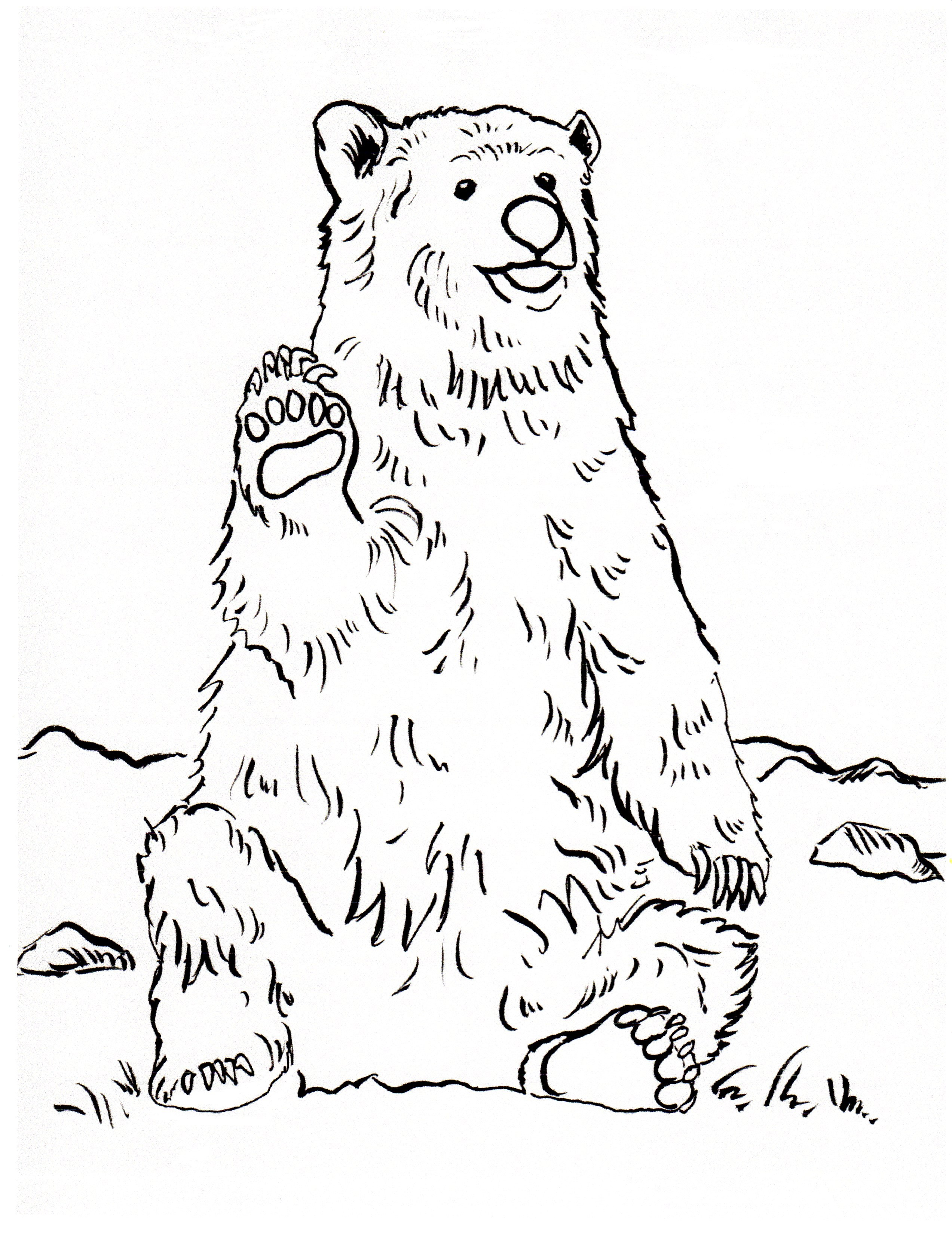 - Grizzly Bear Coloring Page - Art Starts For Kids