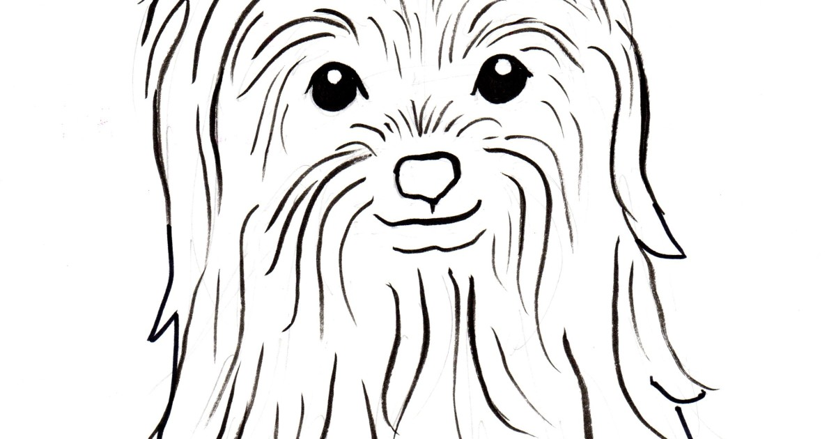 Yorkshire Terrier Coloring Page - Samantha Bell