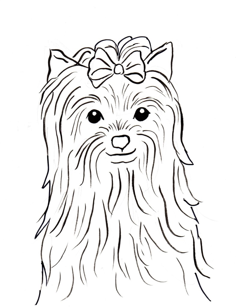 yorkie coloring pages Yorkshire Terrier Coloring Page   Samantha Bell yorkie coloring pages