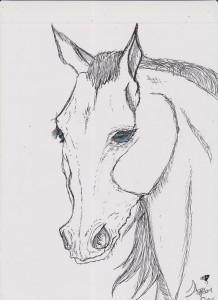 pEN horse 001