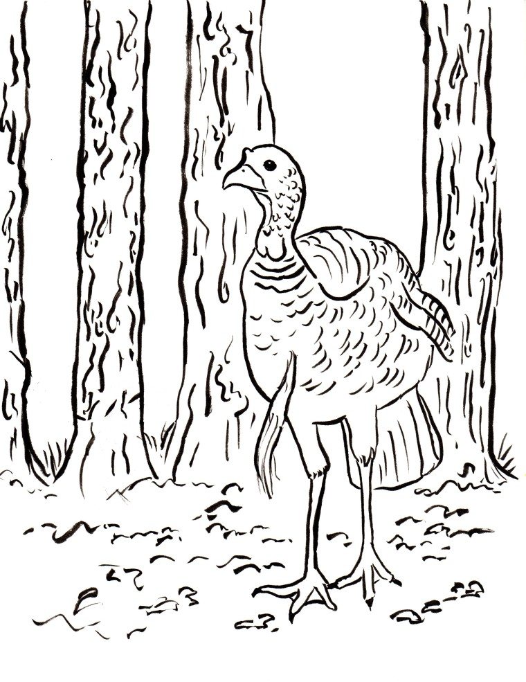 Coloring Pages Archives Page 2 of 7 Samantha Bell