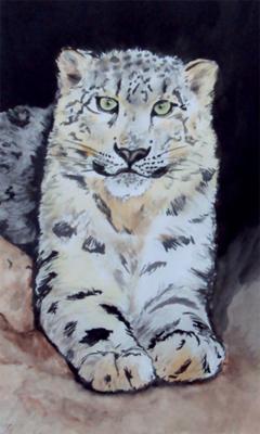 smiling-snow-leopard-21603017