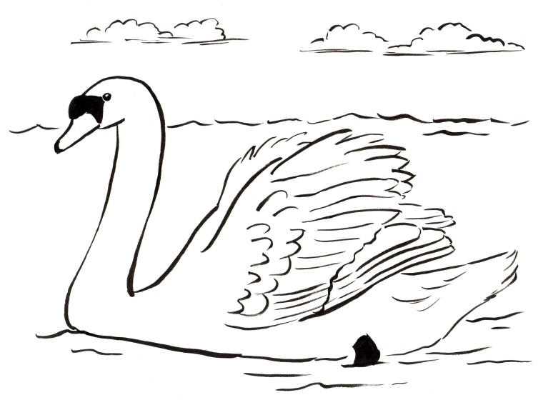 swan coloring pages to print - photo#20