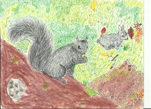 Black squirrel nibbling an acorn