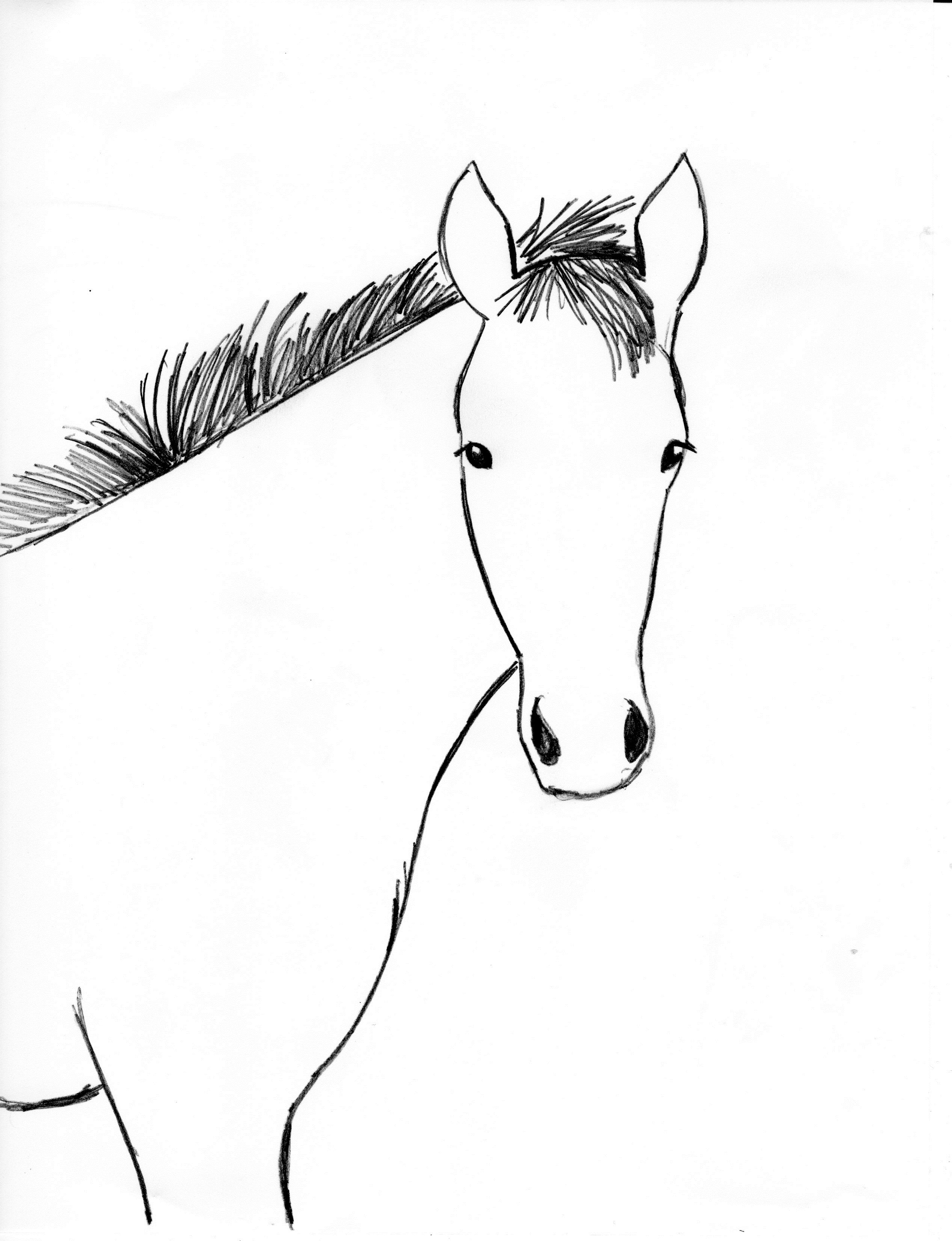 Horse Drawing Step By Step Art Starts