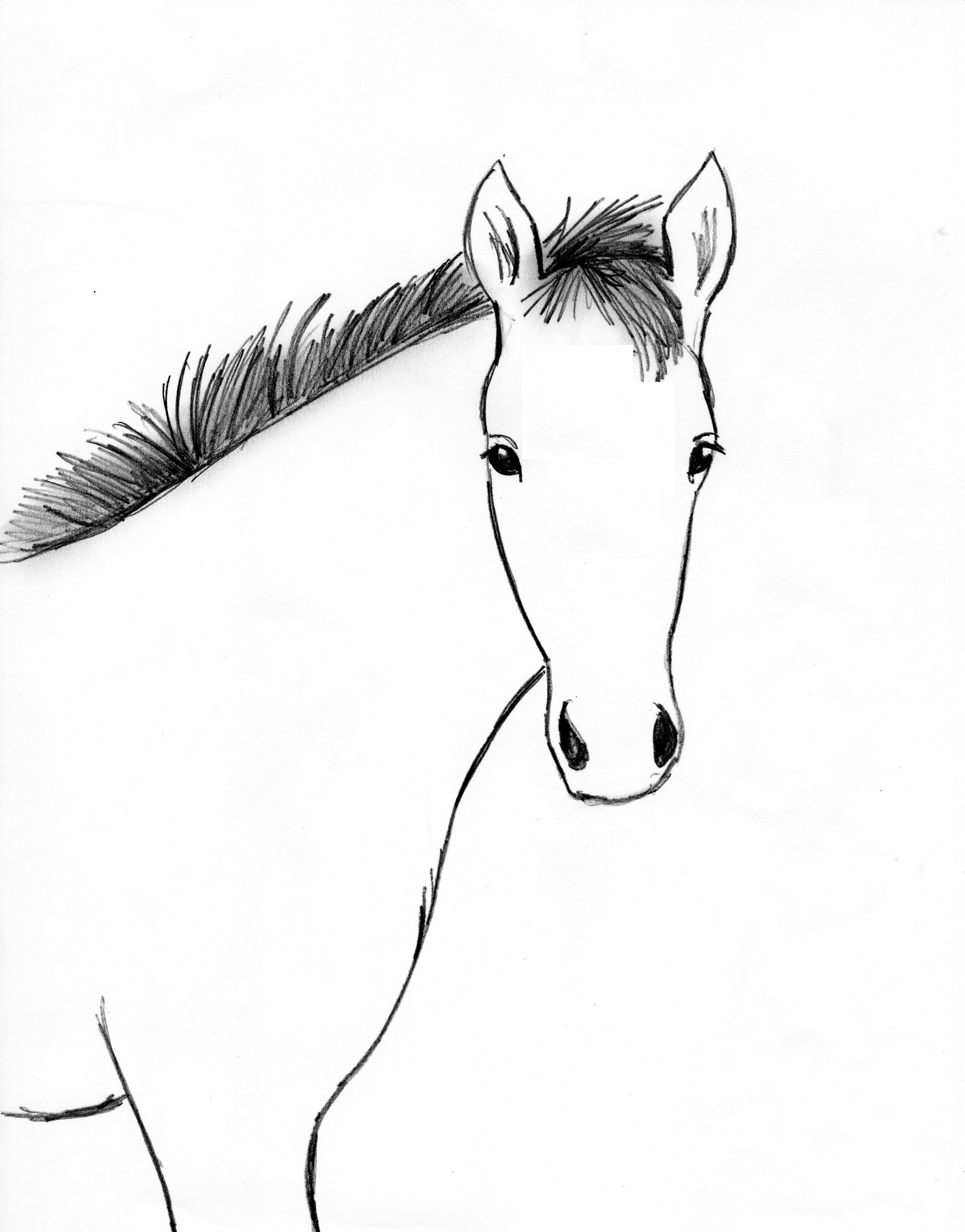 Horse Drawing Step By Step Samantha Bell How To Draw A Horse Mane Solution  For How