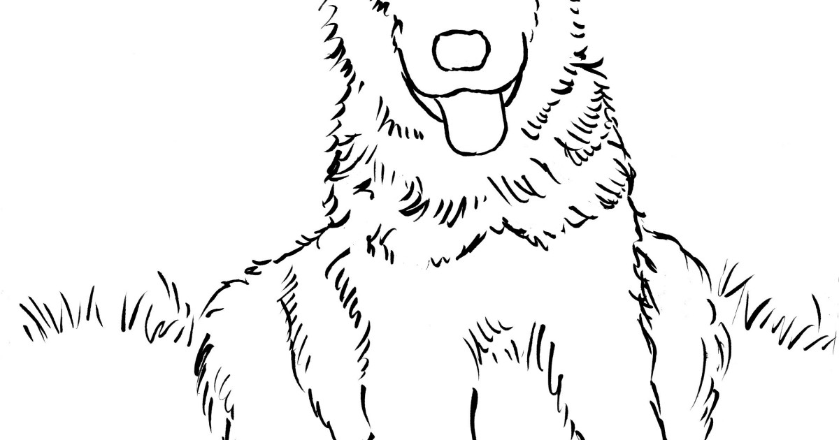 German Shepherd Puppy Coloring Page Art Starts for Kids