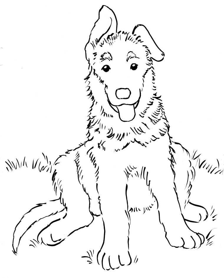 German Shepherd Puppy Coloring Page - Art Starts