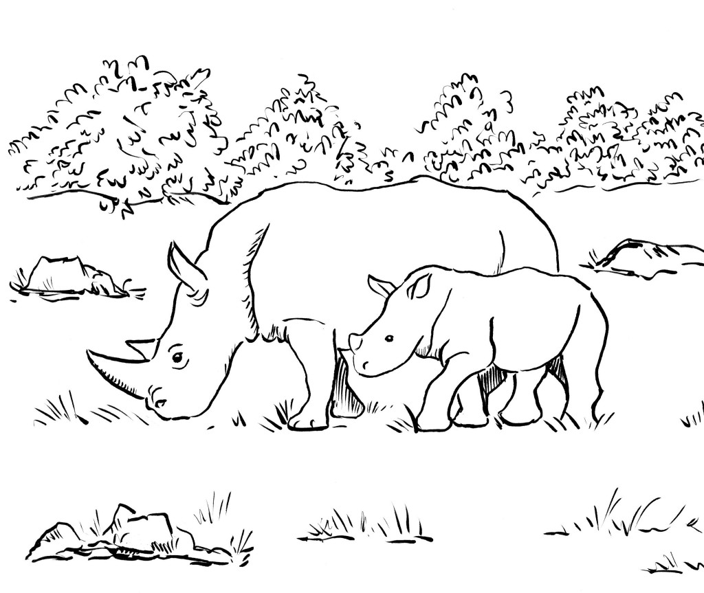 Rhino Coloring Page Samantha Bell