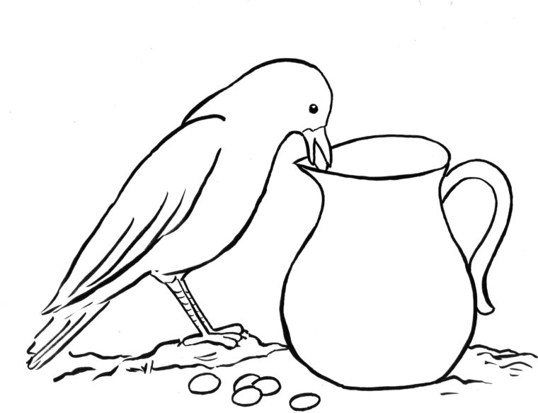 Crow Pitcher Step Step on how to draw crow