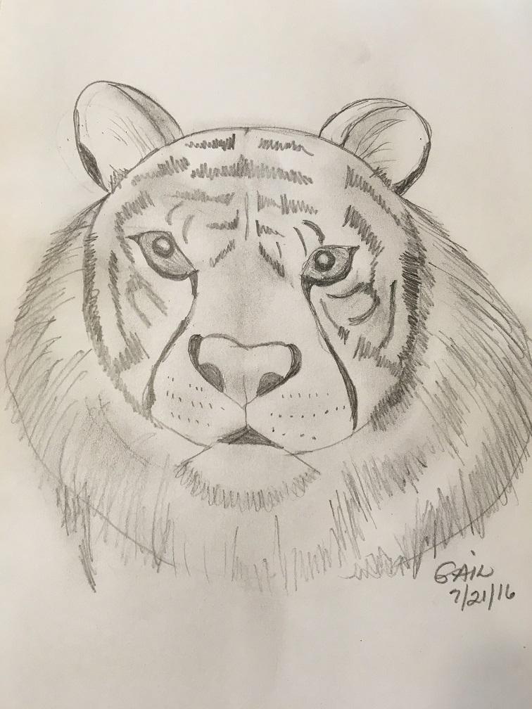 tiger - gail