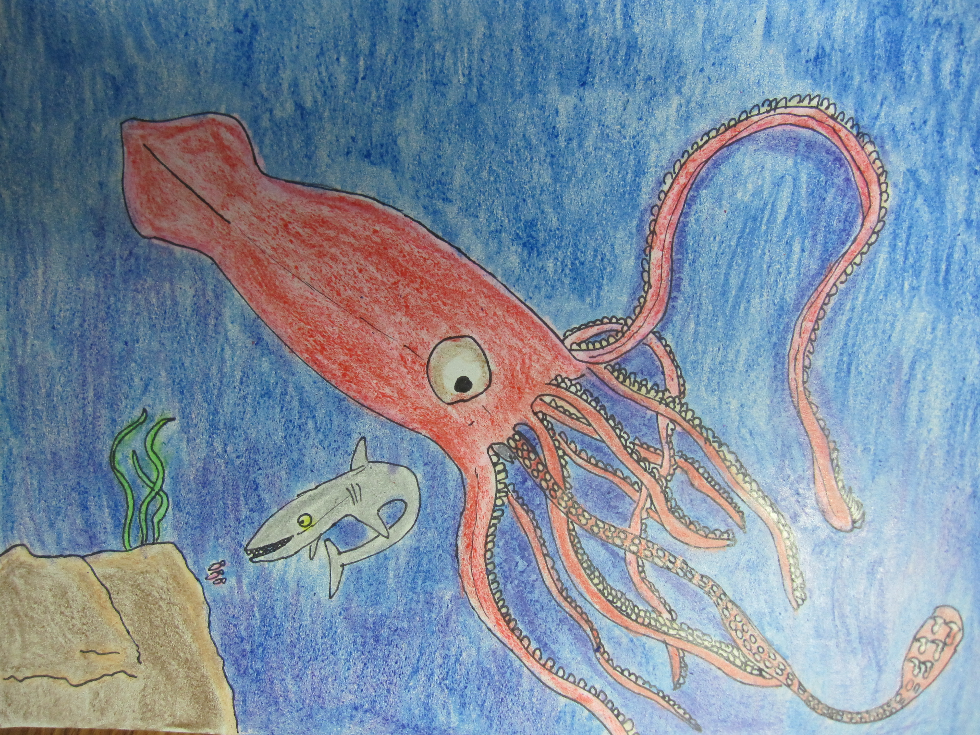 Your Art: Giant squid - Samantha Bell