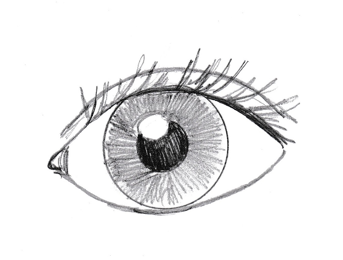 Line Drawing Eye : How to draw an eye samantha bell