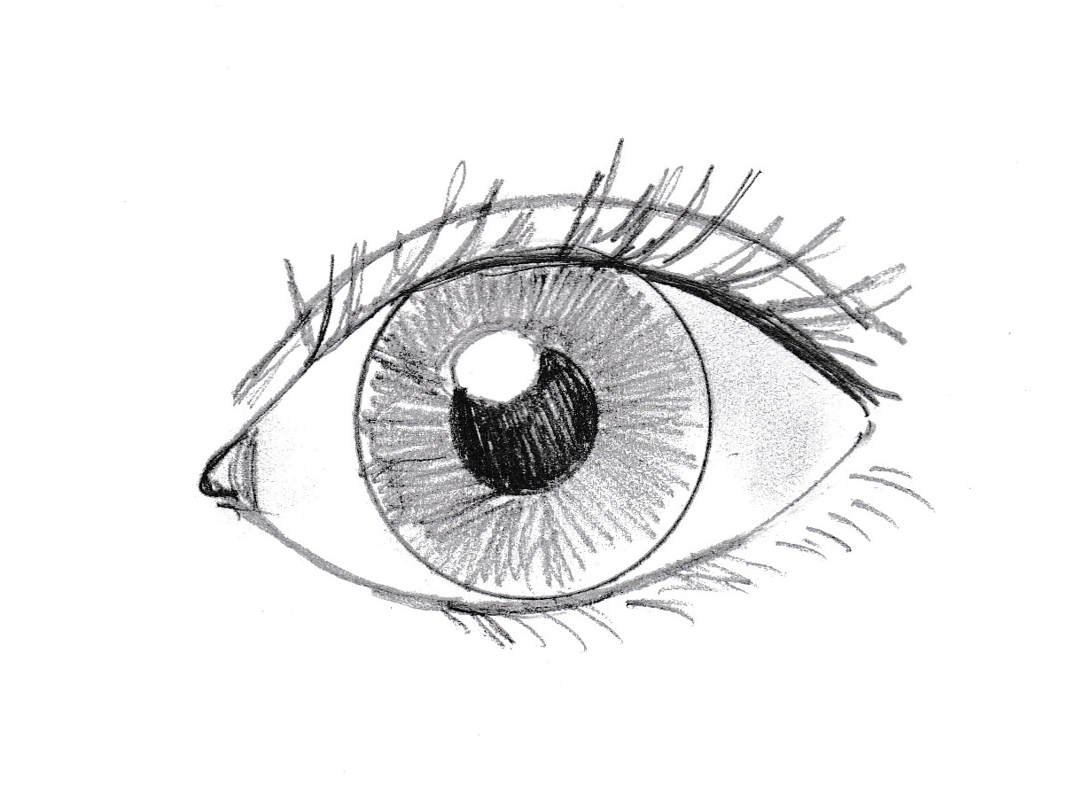 How To Draw An Eye Art Starts For Kids