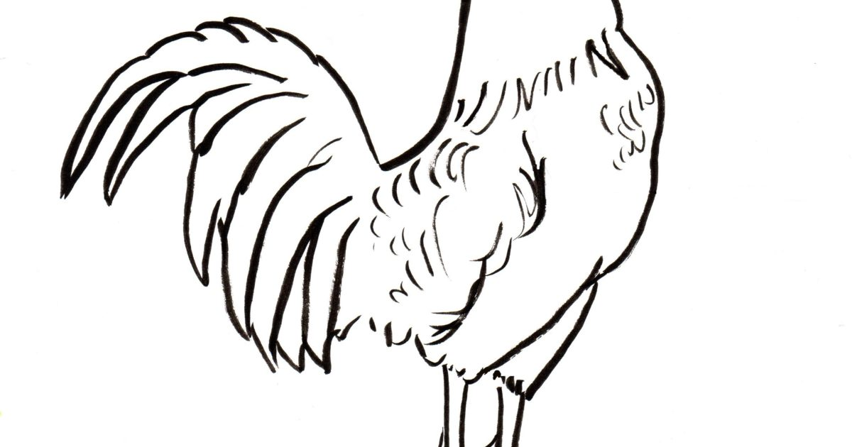 Rooster Coloring Page - Samantha Bell