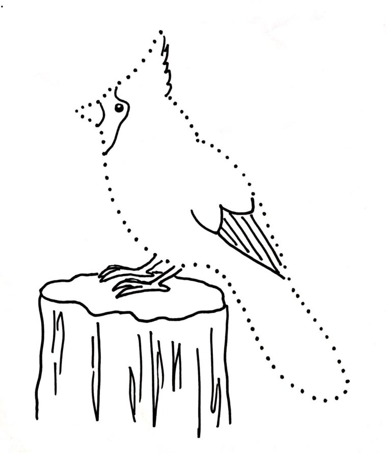 graphic about Free Printable Pictures of Cardinals called Cardinal Dot Drawing - Artwork Starts off for Young children