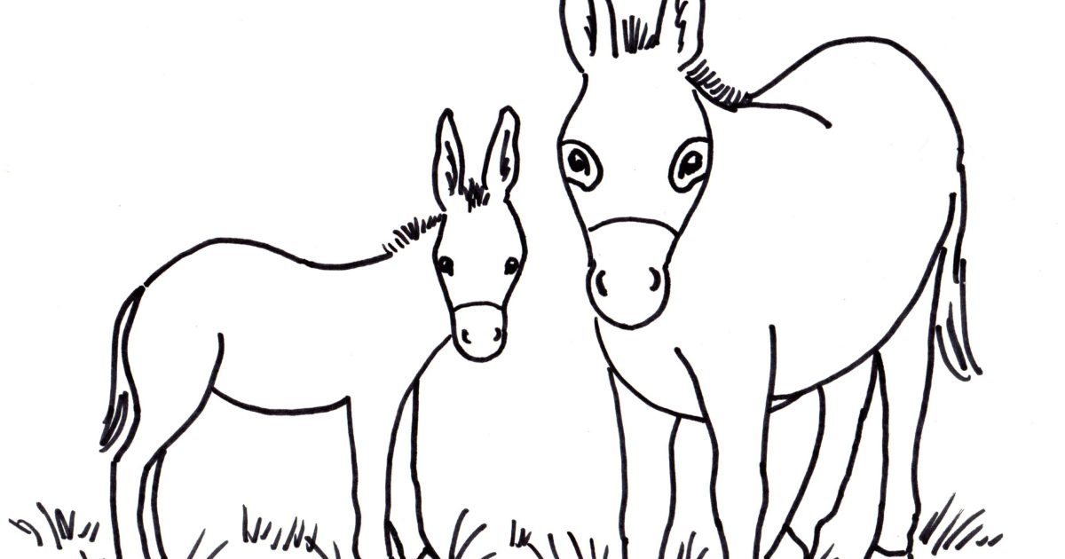 Donkey coloring page samantha bell for Donkey coloring pages free