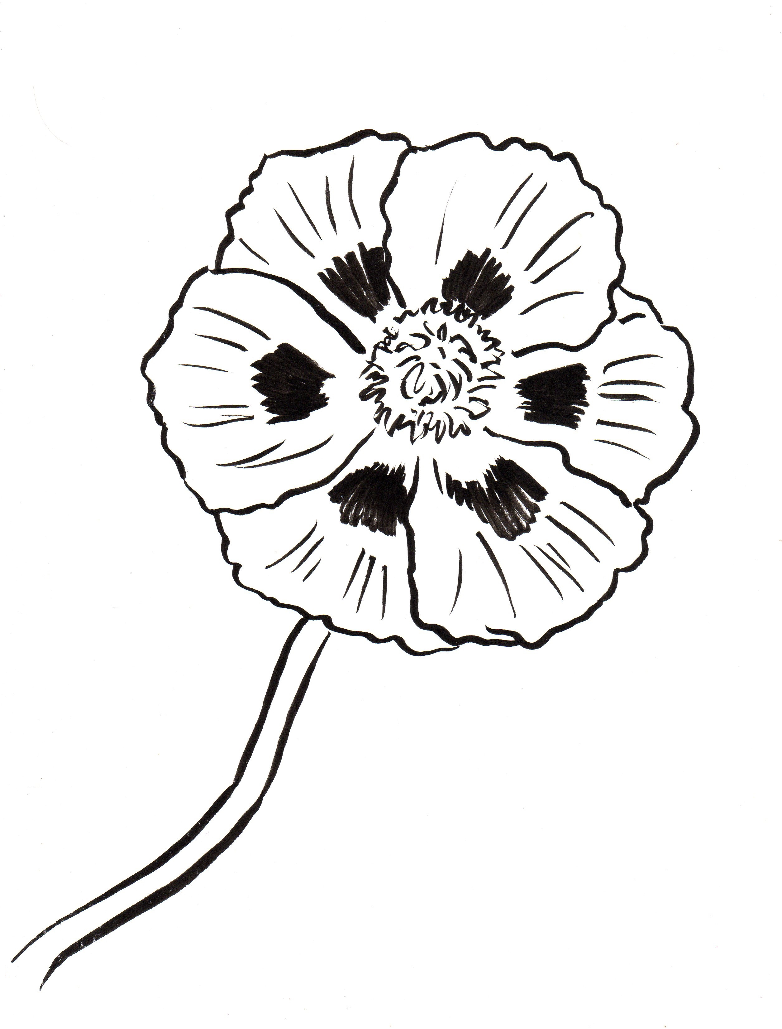 Poppy coloring page samantha bell for Poppy cat coloring pages