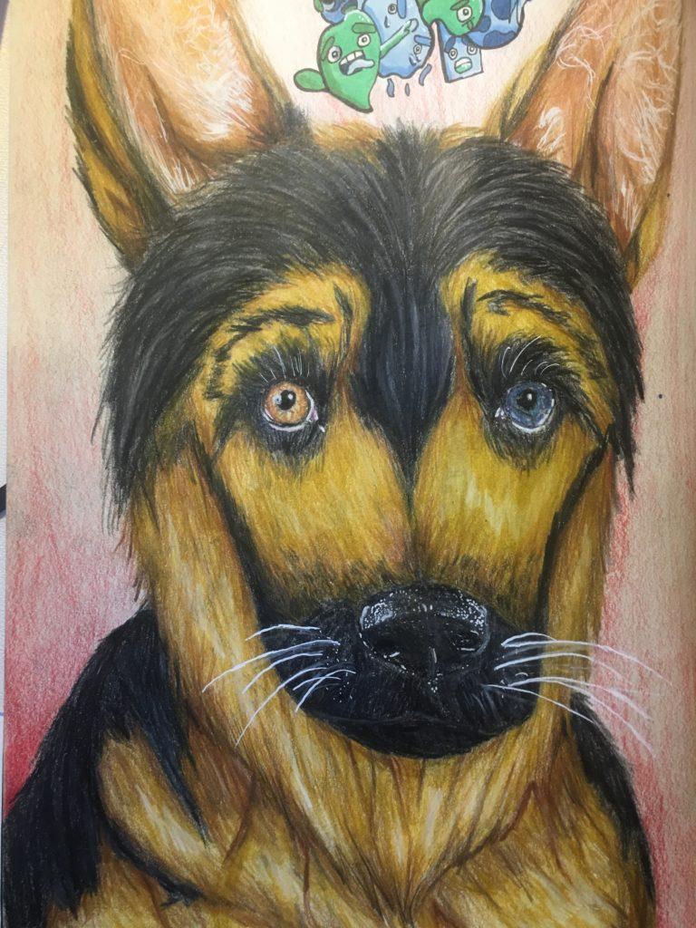 Blue Eyed German Shepherd Art Starts For Kids